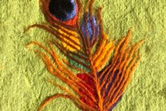 Liadain-Butler-Peacock-Feather