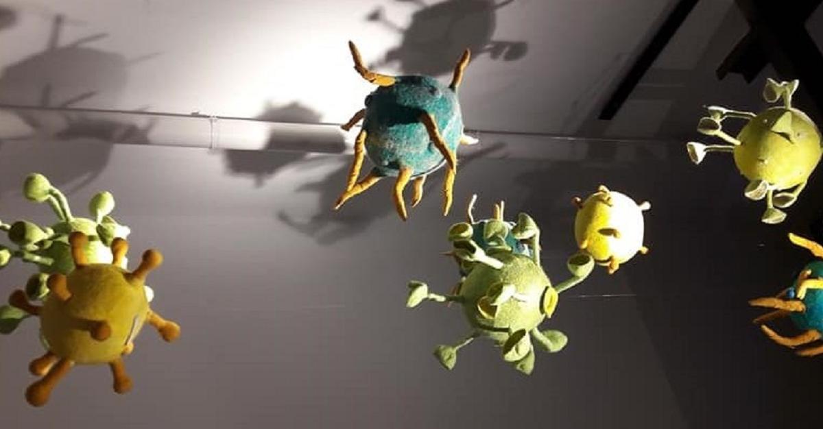 Niki @ Monumentality – Fragility , Kildare National Gallery